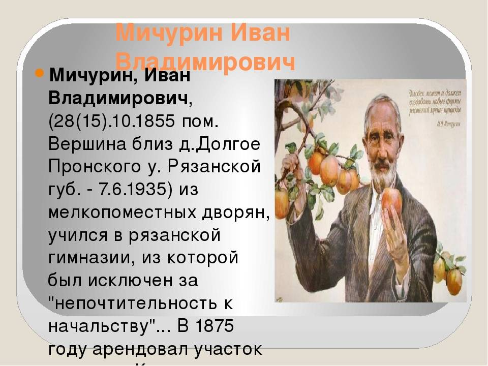 Иван владимирович мичурин. биография. - наука просто