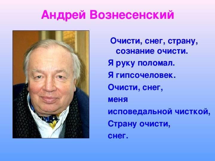 Анастасия вознесенская - биография, информация, личная жизнь, фото, видео