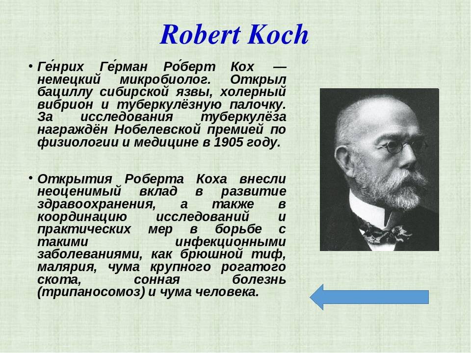 Кох, Роберт