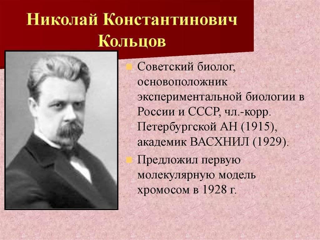 Кольцов, николай константинович биография