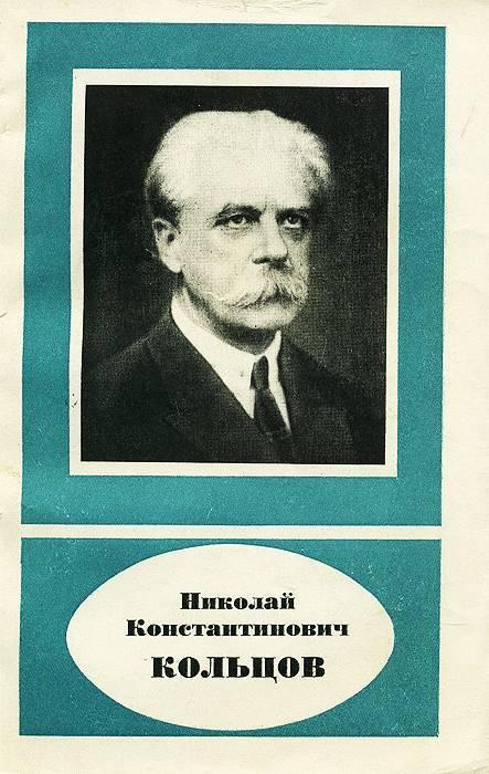 Алексей васильевич кольцов - краткая биография, факты, личная жизнь