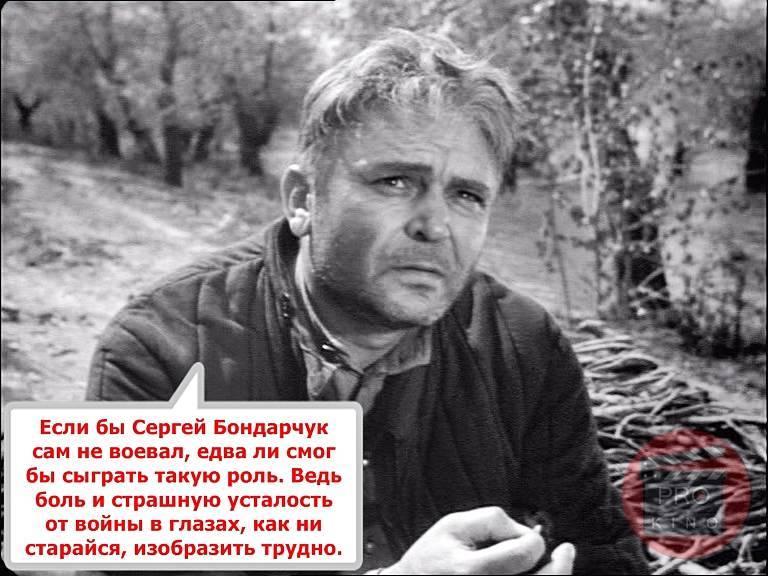 Сергей бондарчук младший - биография, информация, личная жизнь