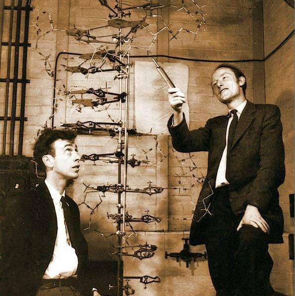 Френсис крик. 100 великих нобелевских лауреатов