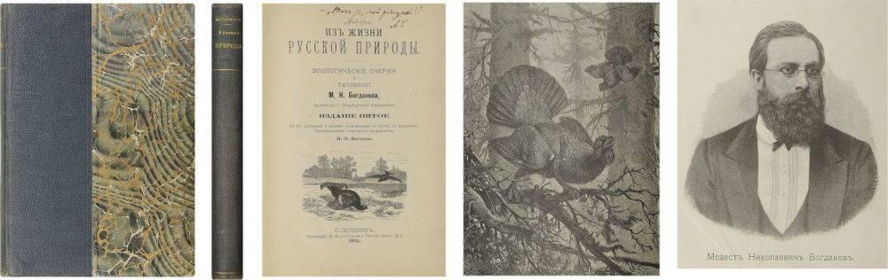 Александра богданова (iii) - биография, информация, личная жизнь, фото