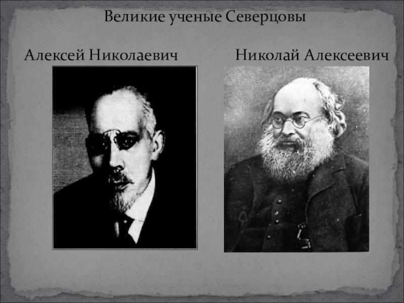 Северцов, николай алексеевич — википедия. что такое северцов, николай алексеевич