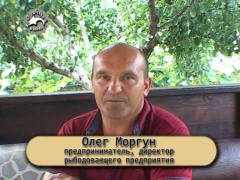 Леонид моргунов — биография, личная жизнь, фото, передачи, слухи и последние новости 2018