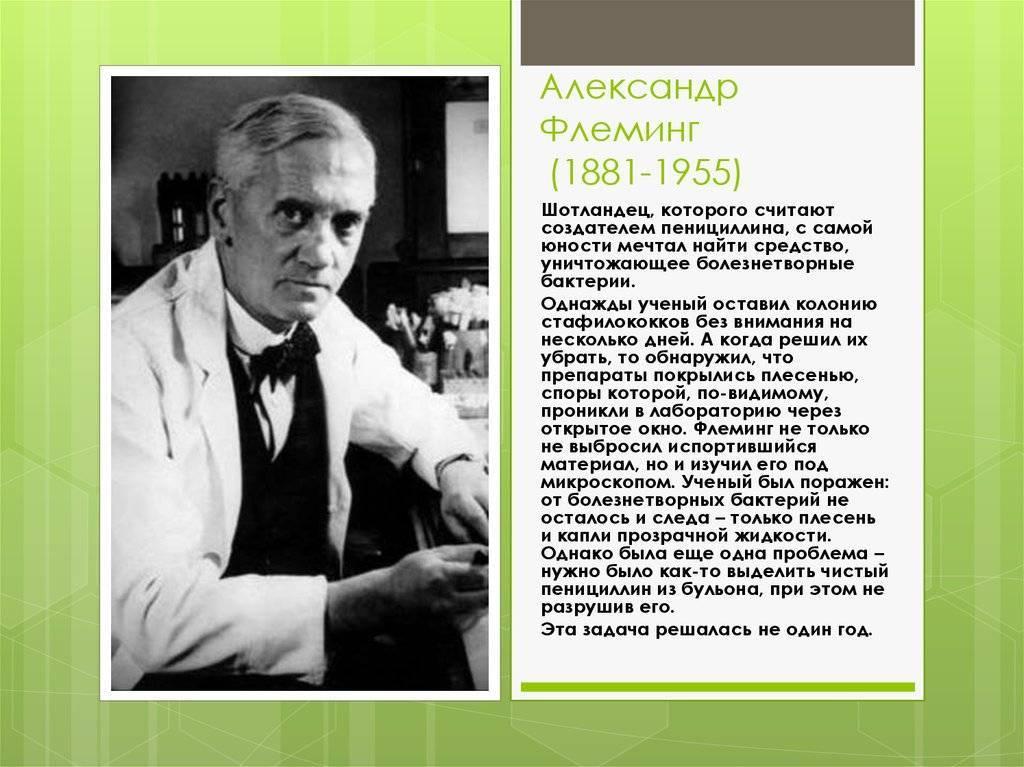 Александр флеминг: биография, открытие пенициллина, научные достижения, дата и причина смерти :: syl.ru