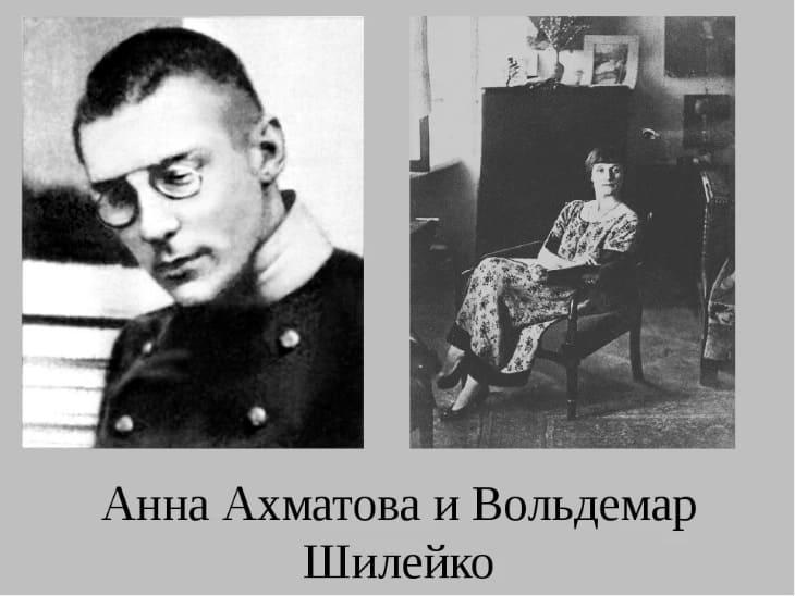 Шилейко, владимир казимирович — википедия. что такое шилейко, владимир казимирович