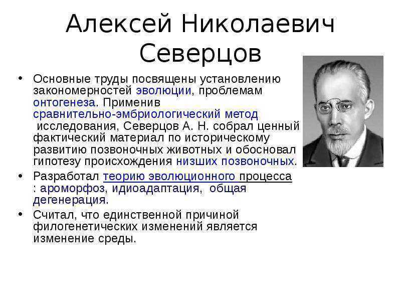 Северцов, николай алексеевич — вики