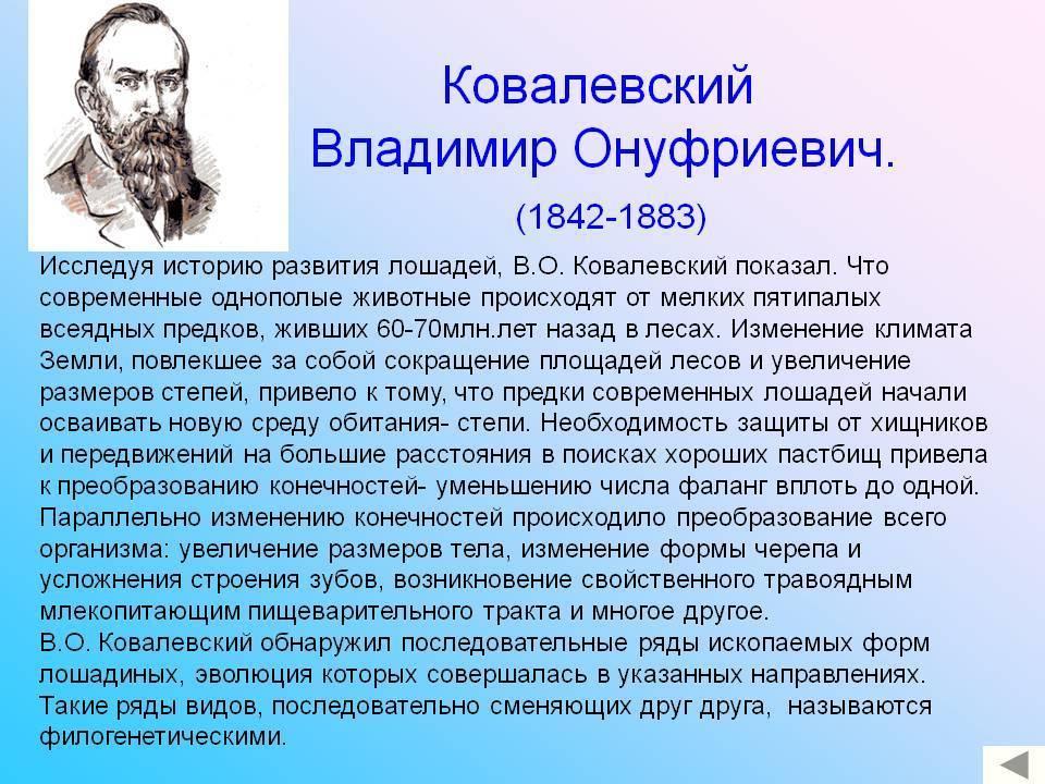 Владимир онуфриевич ковалевский биография, научная деятельность, изданные труды