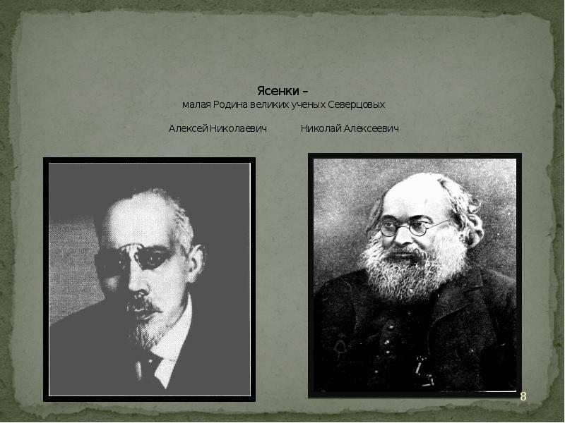 Северцов, алексей николаевич биография, научная деятельность, семья, труды