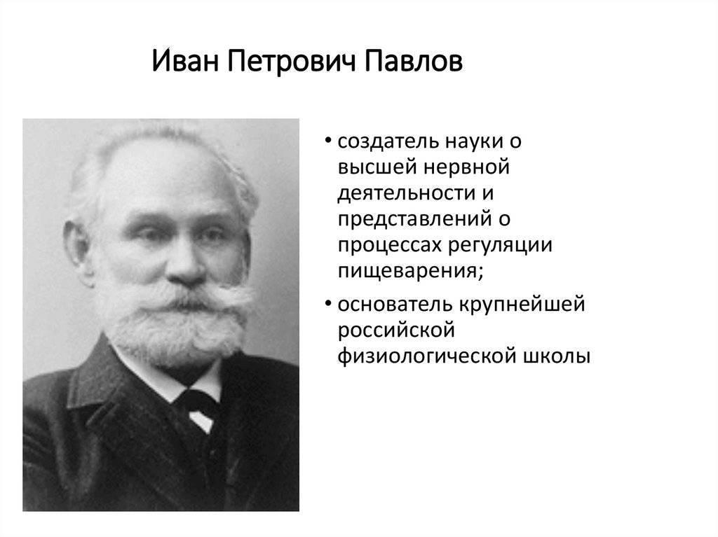 Краткая биография и главные даты жизни павлова ивана петровича (wolcha.ru)