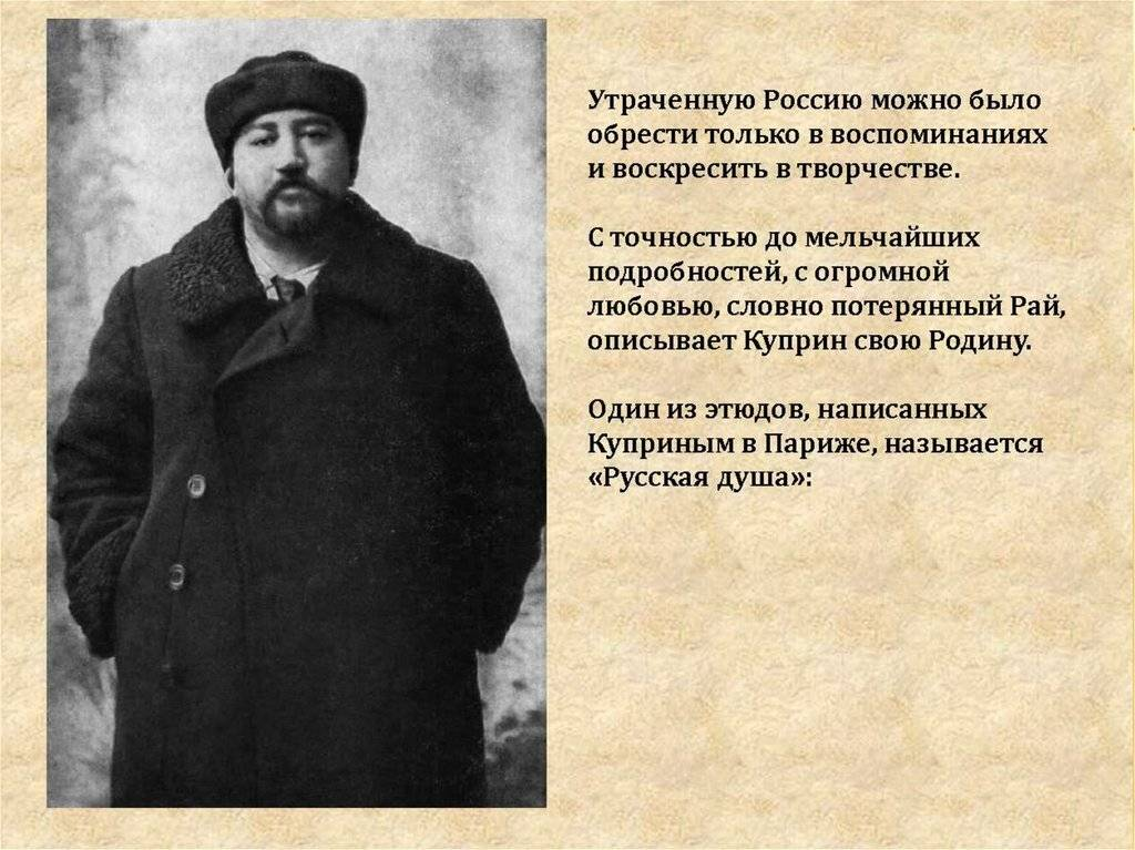 Александр куприн: биография, творчество и интересные факты из жизни :: syl.ru