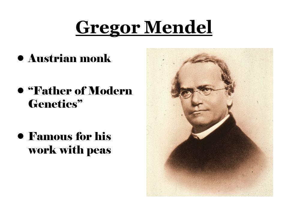 Грегор мендель — интересные факты