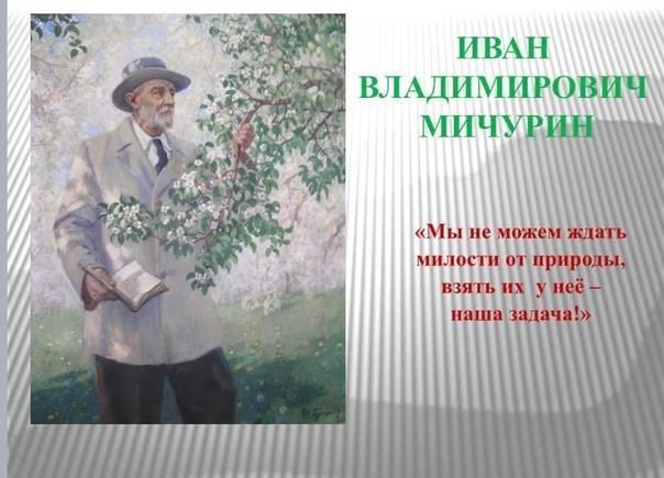 Иван мичурин - биография, личная жизнь, фото