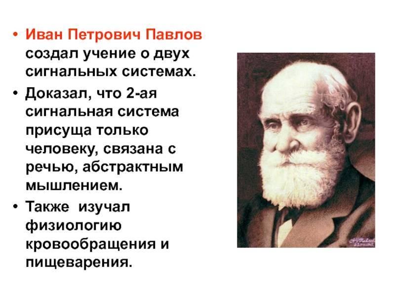 10 фактов об академике павлове / newtonew: новости сетевого образования