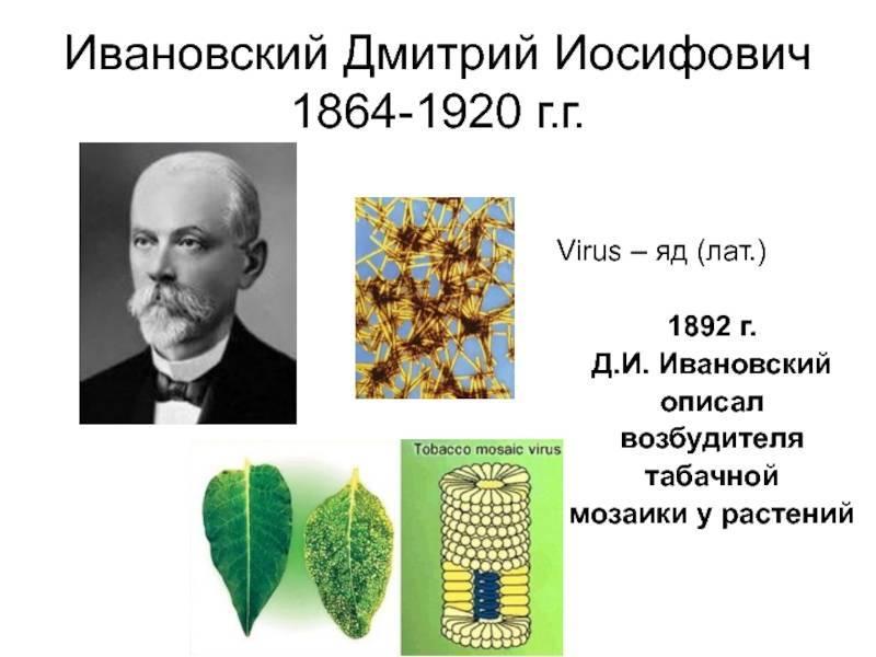 Ивановский дмитрий иосифович википедия