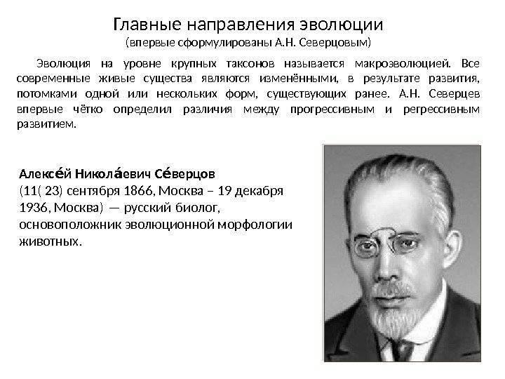 Николай северцов