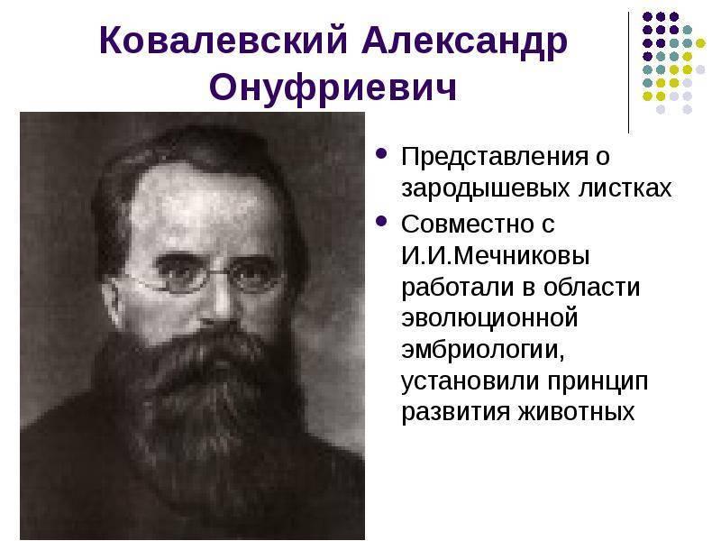 Ковалевский, александр онуфриевич — википедия. что такое ковалевский, александр онуфриевич