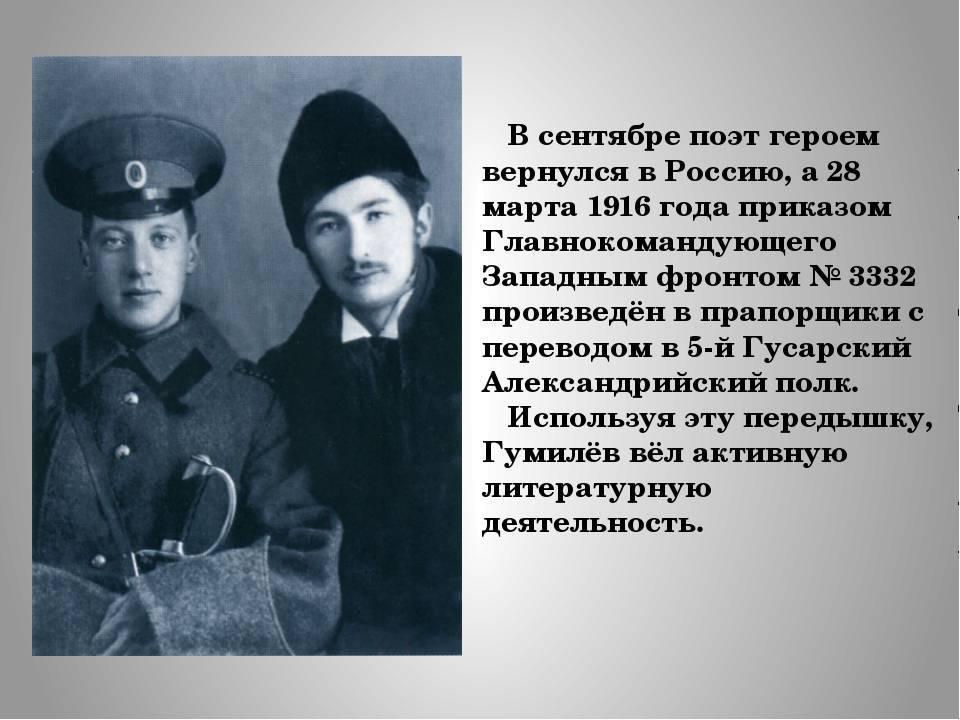 Биография Николая Гумилева
