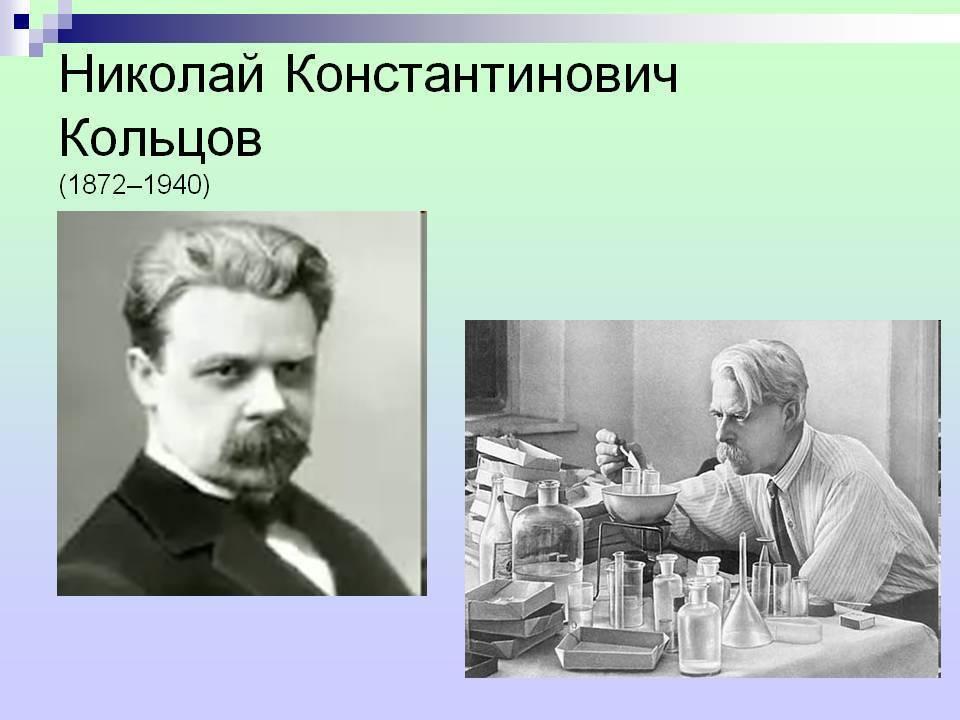 Кольцов, николай константинович - wiki