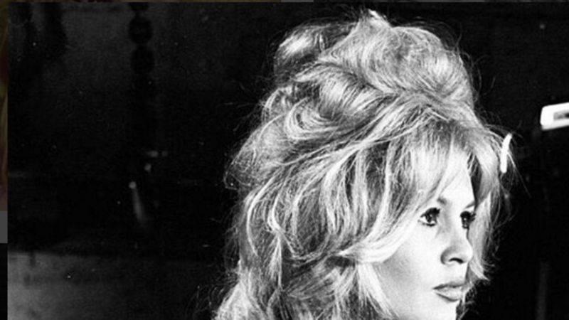 Актриса брижит бардо: фото, фильмография, биография, личная жизнь и интересные факты :: syl.ru