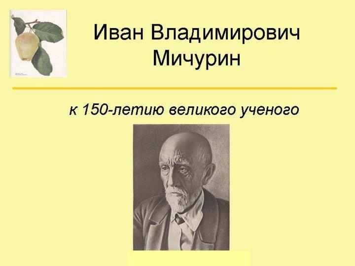 Мичурин иван владимирович: лучшие сорта плодовых и ягодных культур, созданные культовым биологом   сад и огород