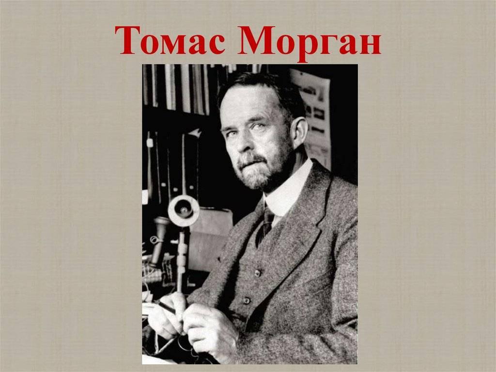 Биография томаса гент моргана . доклад. биология. 2008-12-09
