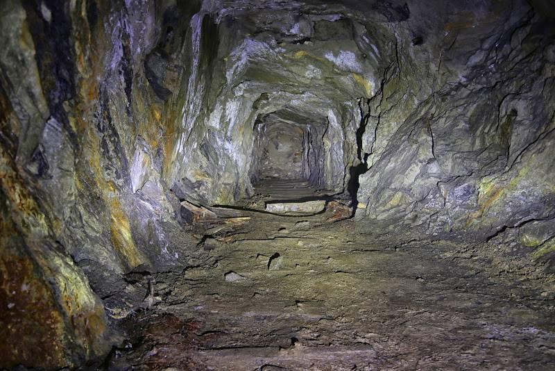 Рудник, давид яковлевич