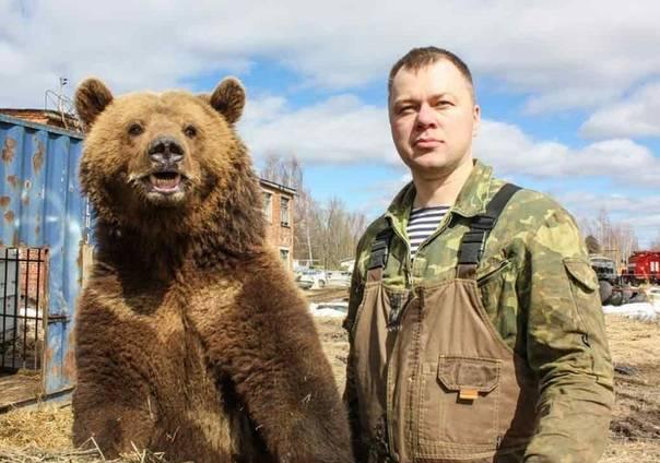 Медведь, александр васильевич биография, спортивные достижения, тренерская работа, общественная деятельность, семья
