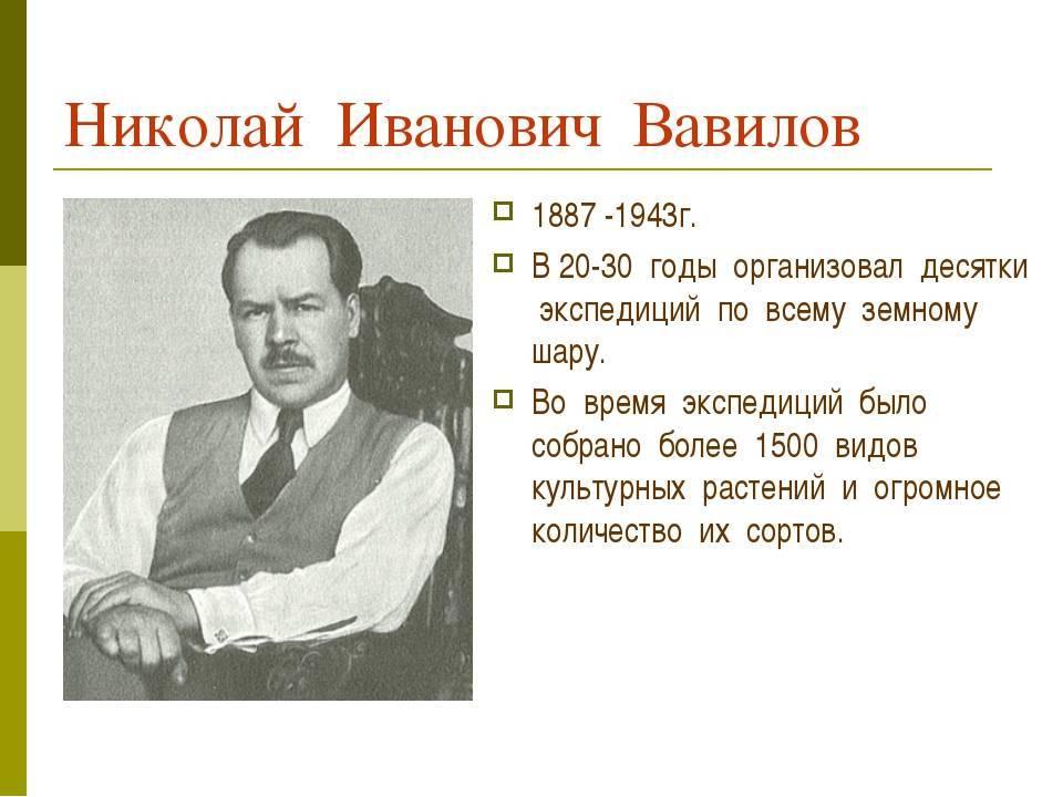 Краткая биография вавилова николая ивановича