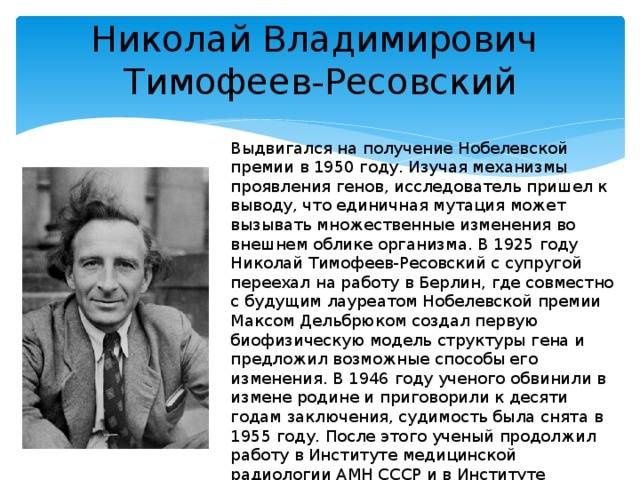 Николай тимофеев-ресовский: генетика, нацисты и мозг ленина | крамола