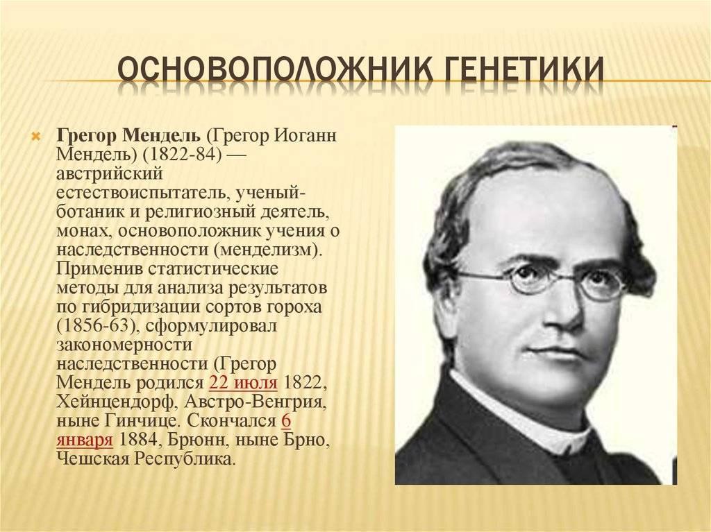 Оcновоположники науки генетики   знания, мысли, новости — radnews.ru