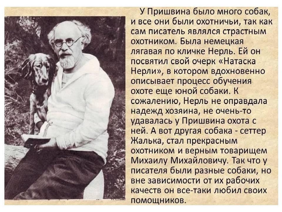 Краткая биография пришвина – самое важное и интересное для детей из жизни михаила михайловича