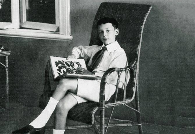 Набоков владимир владимирович, краткая биография