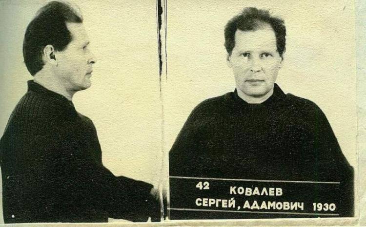 Ковалев, сергей адамович