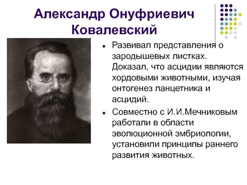 Ковалевский владимир онуфриевич википедия