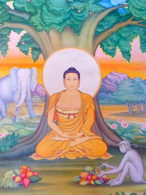 Сиддхартха гаутама (будда) как клинический случай депрессии сиддхартха гаутама (будда) как клинический случай депрессии — саморазвитие и самосовершенствование — nperov.ru   программа саморазвития, уроки медитации