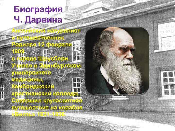 Theperson: чарьлз дарвин, биография, история жизни, причины известности