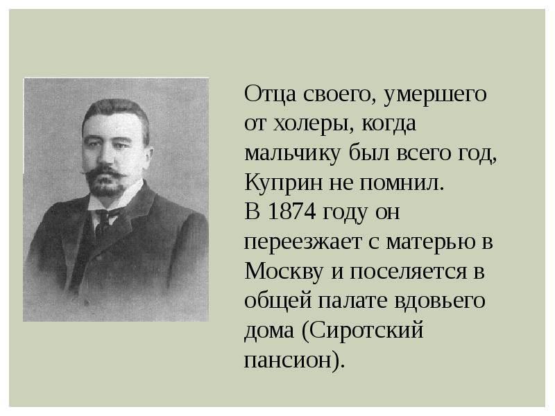 Краткая биография куприна > точка-ру