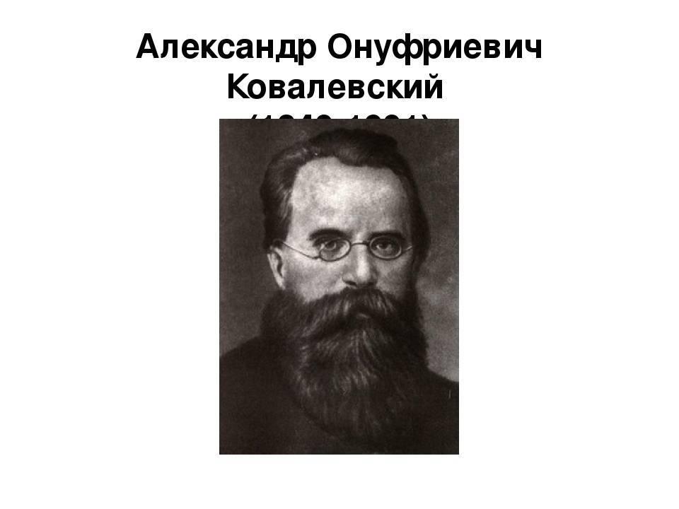 Ковалевский александр онуфриевич википедия