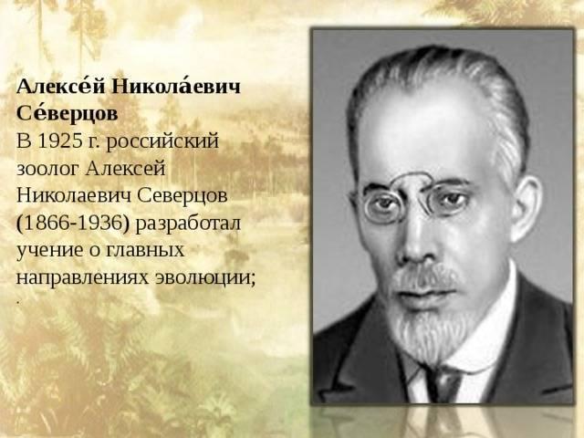 Биография Николая Северцова