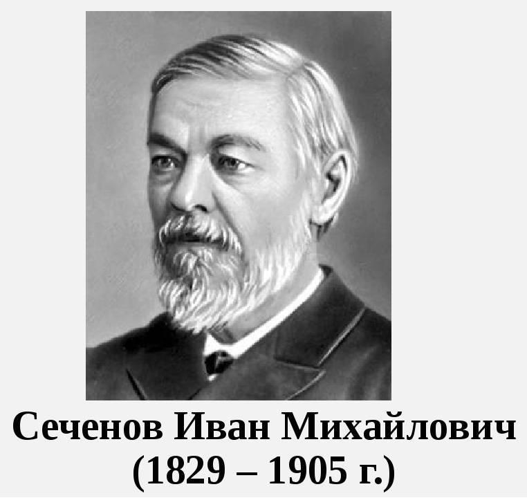 Сеченов, иван михайлович — википедия. что такое сеченов, иван михайлович
