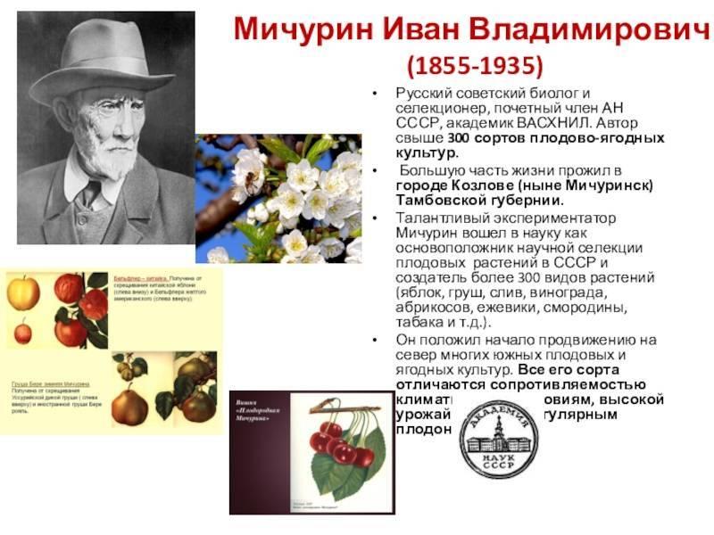 Иван владимирович мичурин (1855-1935) [1948 - - люди русской науки. том 2]