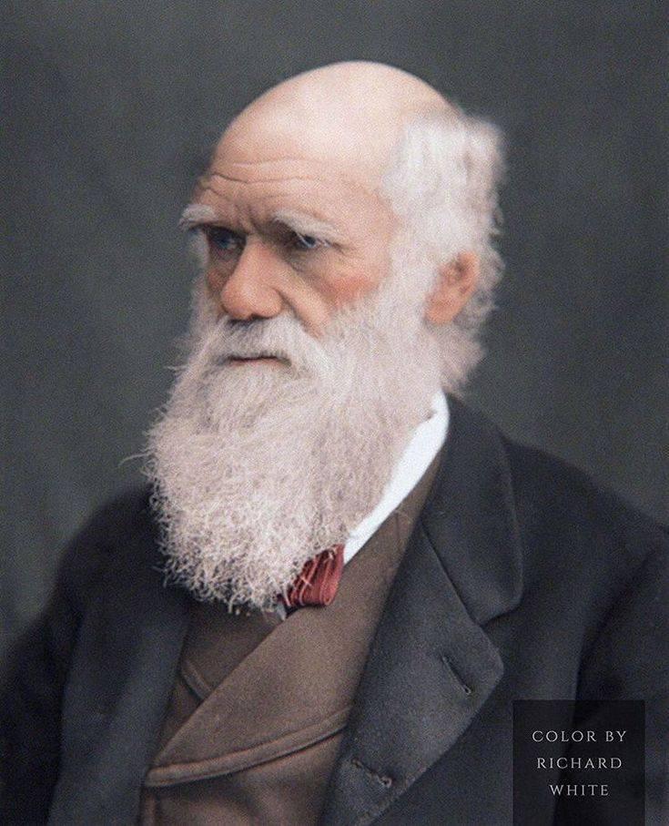Чарльз дарвин - биография, факты, фото