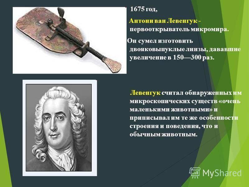 Антони ван левенгук и его вклад в биологию - 384 года со дня рождения   facenews.ua: новости украины