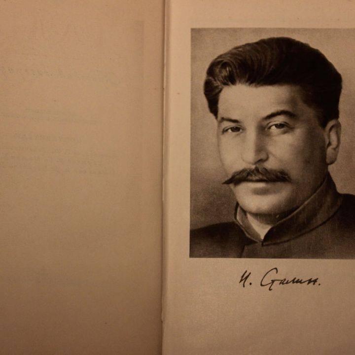 Алена рапунцель (савкина) - биография, информация, личная жизнь, фото