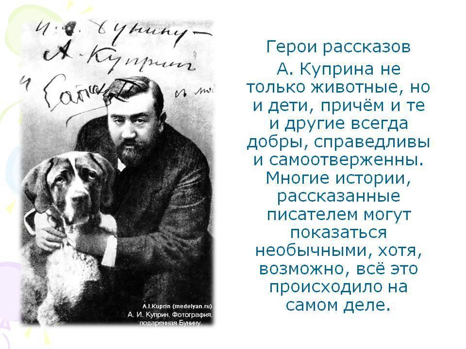 Александр куприн - биография, информация, личная жизнь