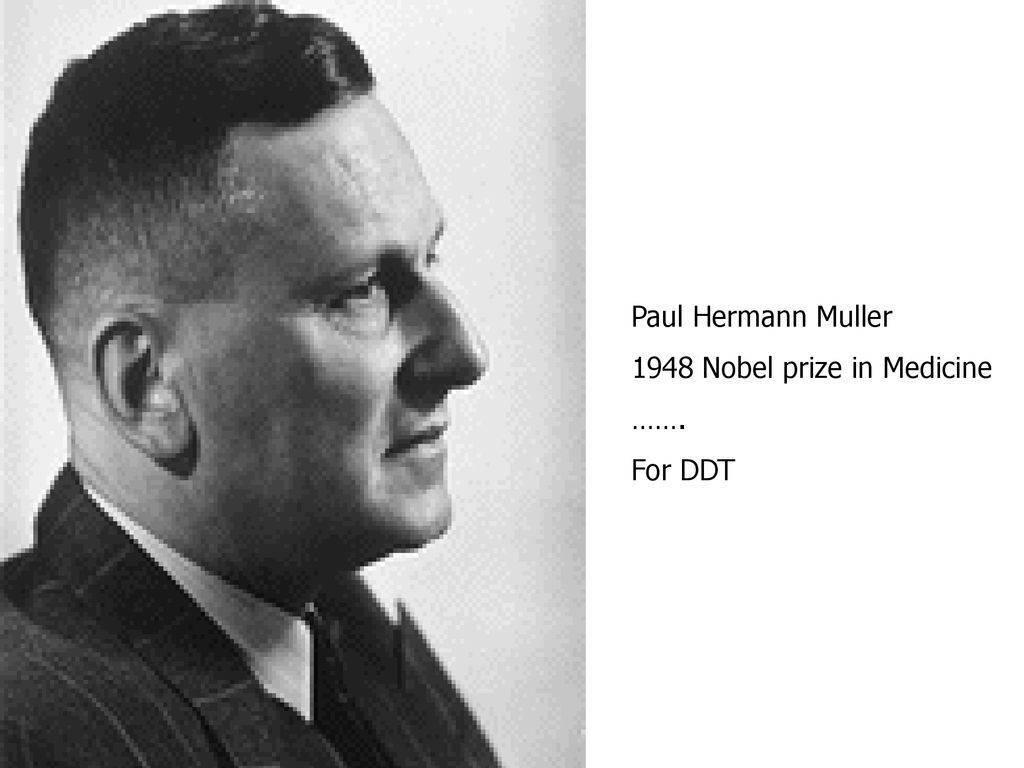 Мюллер, пауль герман