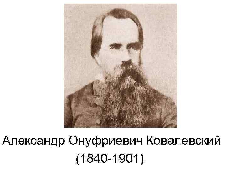 Ковалевский, александр онуфриевич википедия
